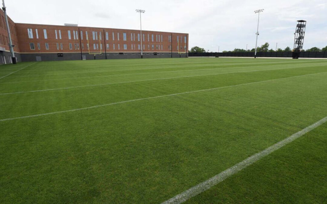Construction and Maintenance of Natural Turfgrass